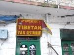 Yak Resto, Dharmsala, India 2013
